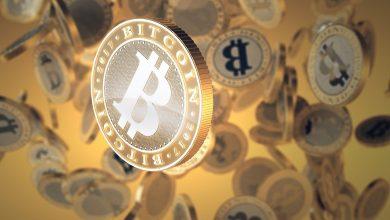 musk bitcoin